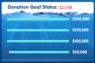 Let's All Join Fins donations chart