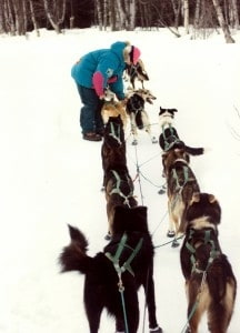 Lisa Wehr prepping her sleigh dogs for a race