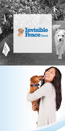 Invisible Fence Logo & Dog Licking Owner's Face