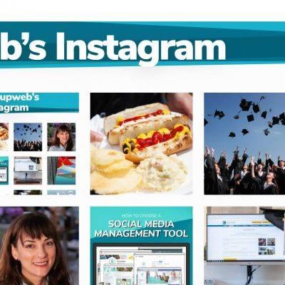oneupweb instagram category on desktop