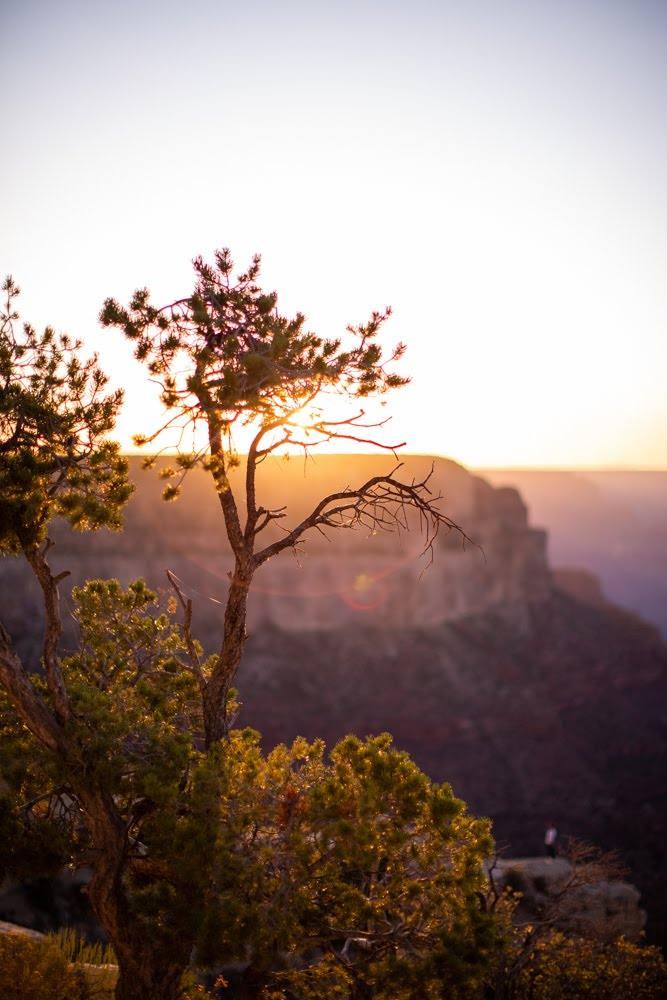 sunset over a clifftop