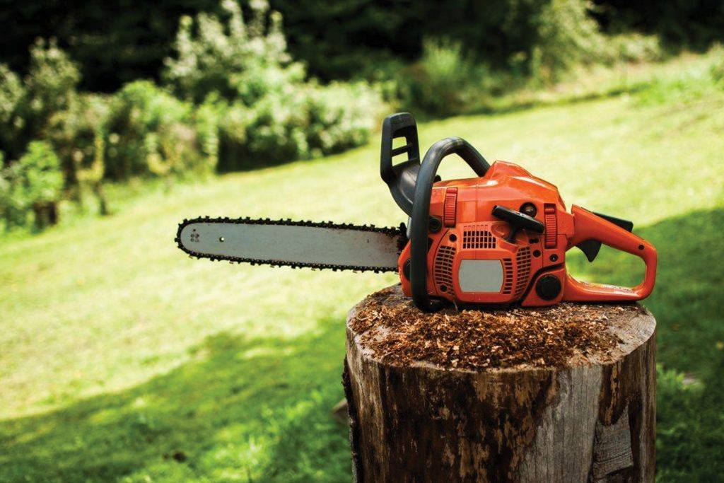 Chainsaw rests on a stump on a lawn in summertime
